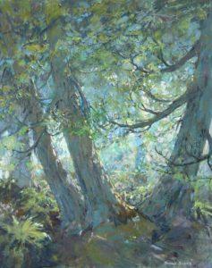 Bonnie-Brooks--Dancing-Cedars