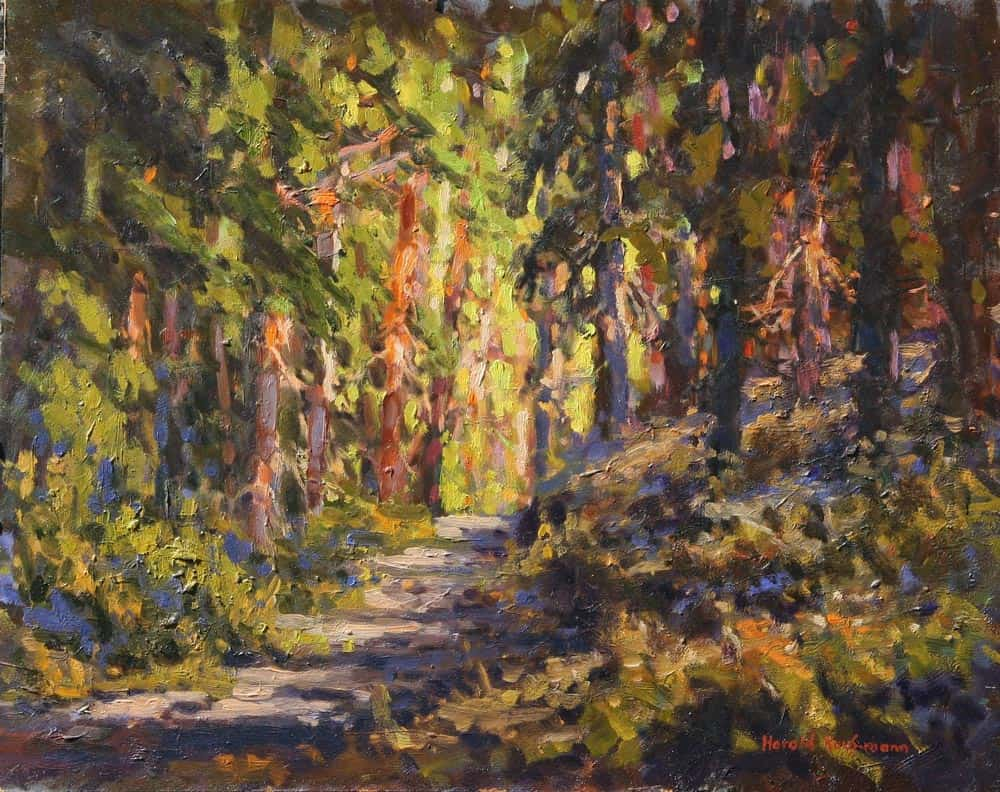 Harold Kaufmann--Path Through The Woods