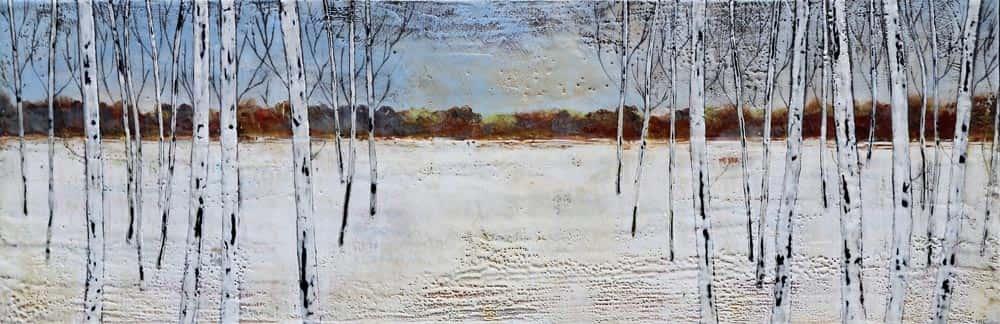 Sarah Hunter -- 28 Birches