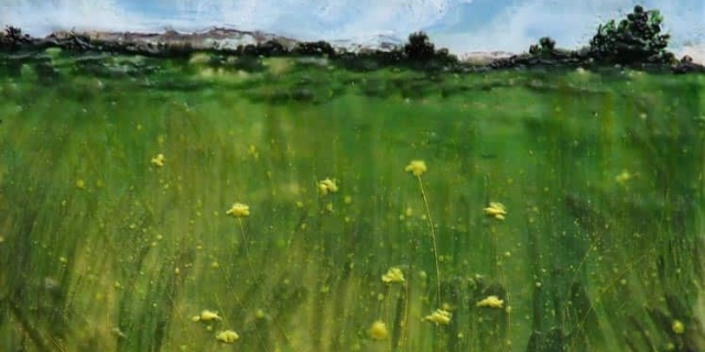 Sarah Hunter -- Summer Meadow