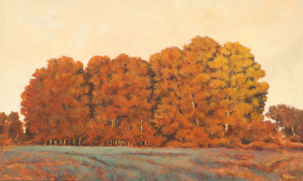 Michael Minthorn -- Treeline Sunset