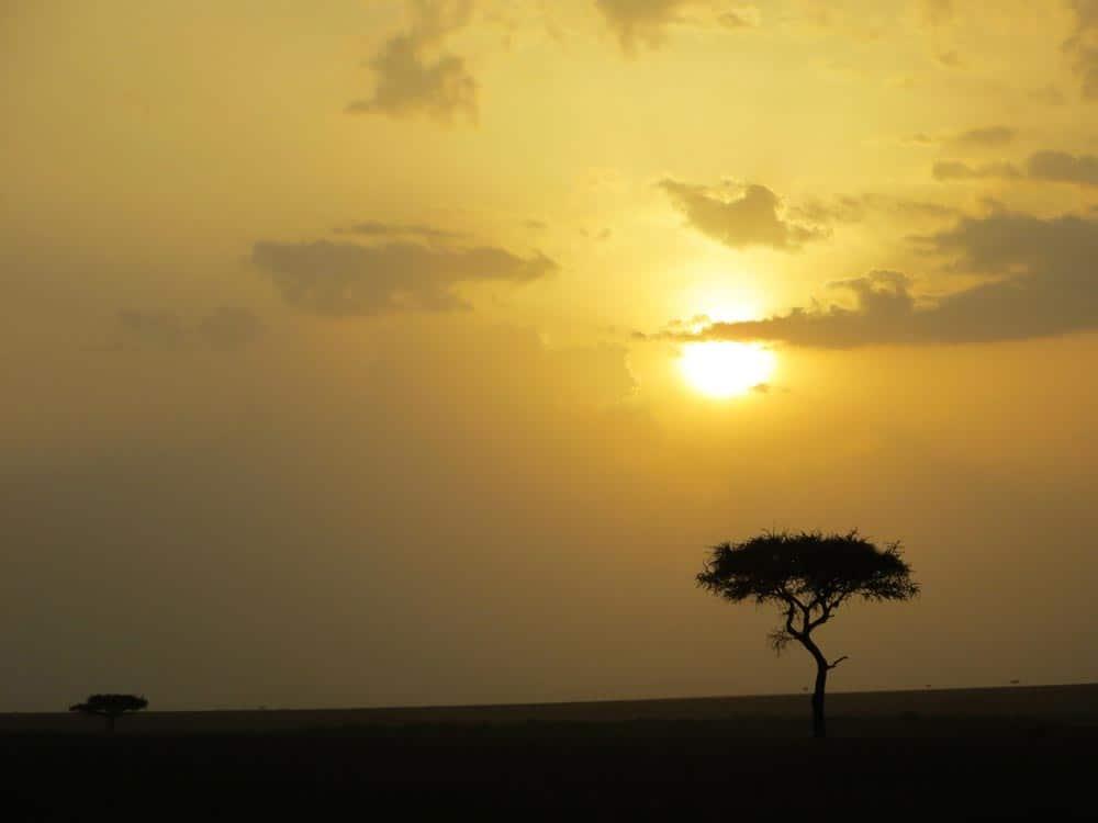 42--Kenya Sunset
