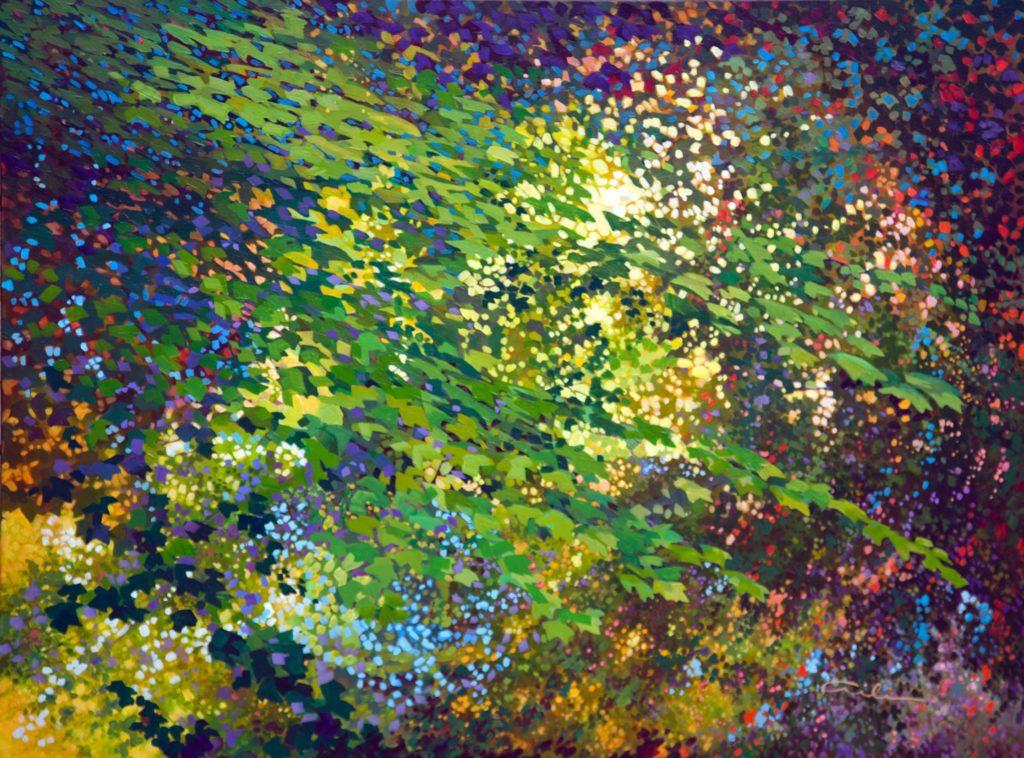 Aili Kurtis--Spirit Glade